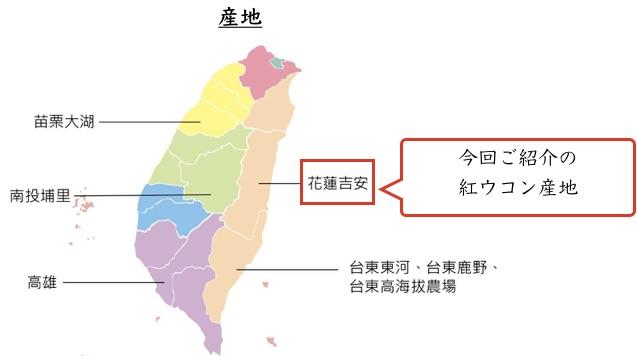 台湾産ウコン